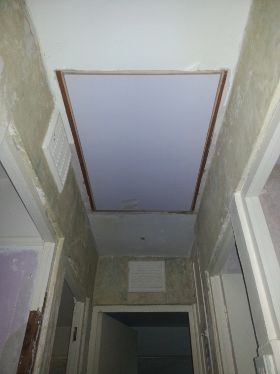 new loft hatch